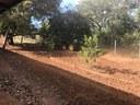 Preparação do solo já foi iniciada